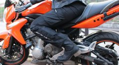 Pantalon Ixon Corsica Lady