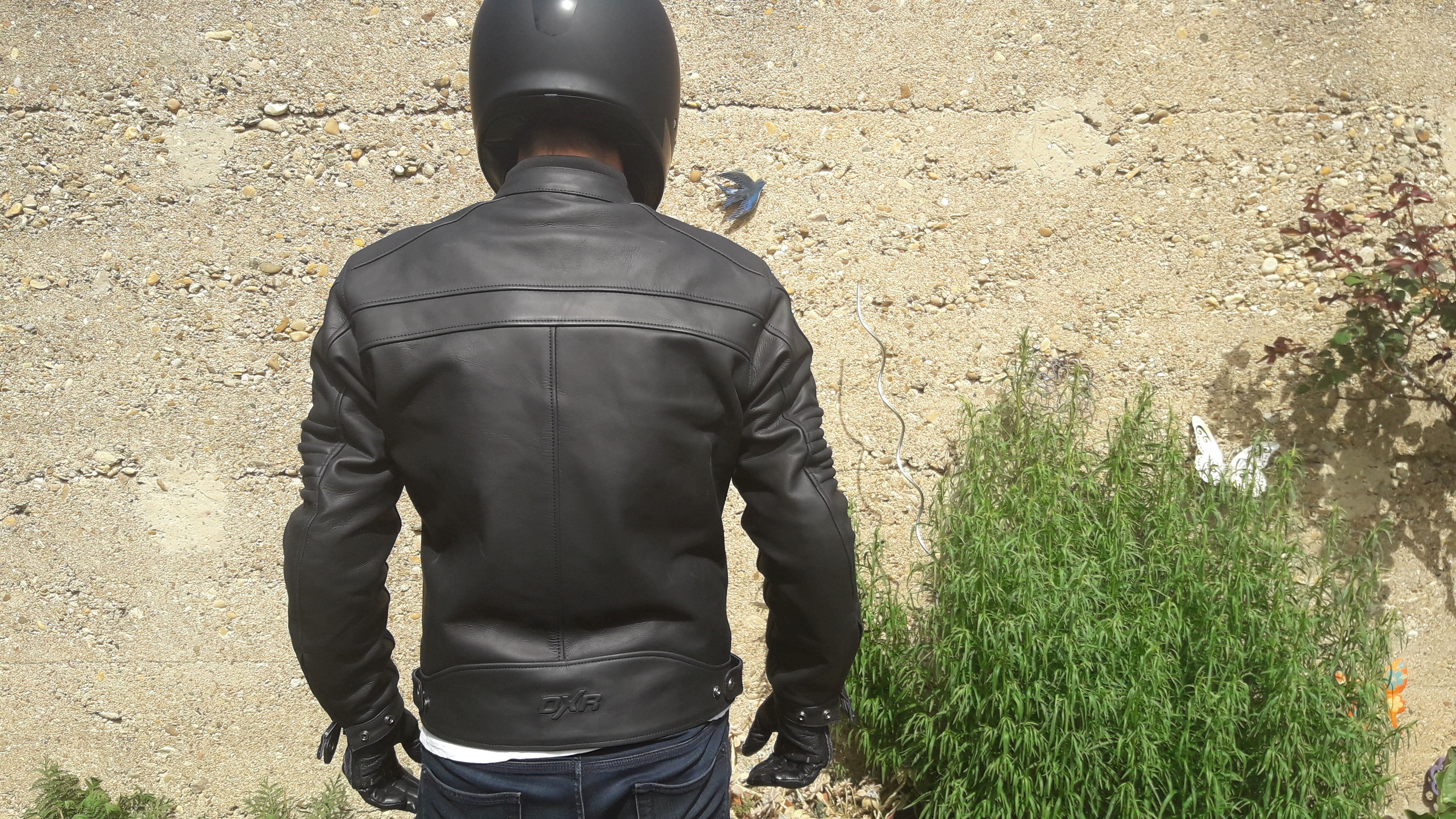Le blouson en cuir DXR DEAN avec dorsale