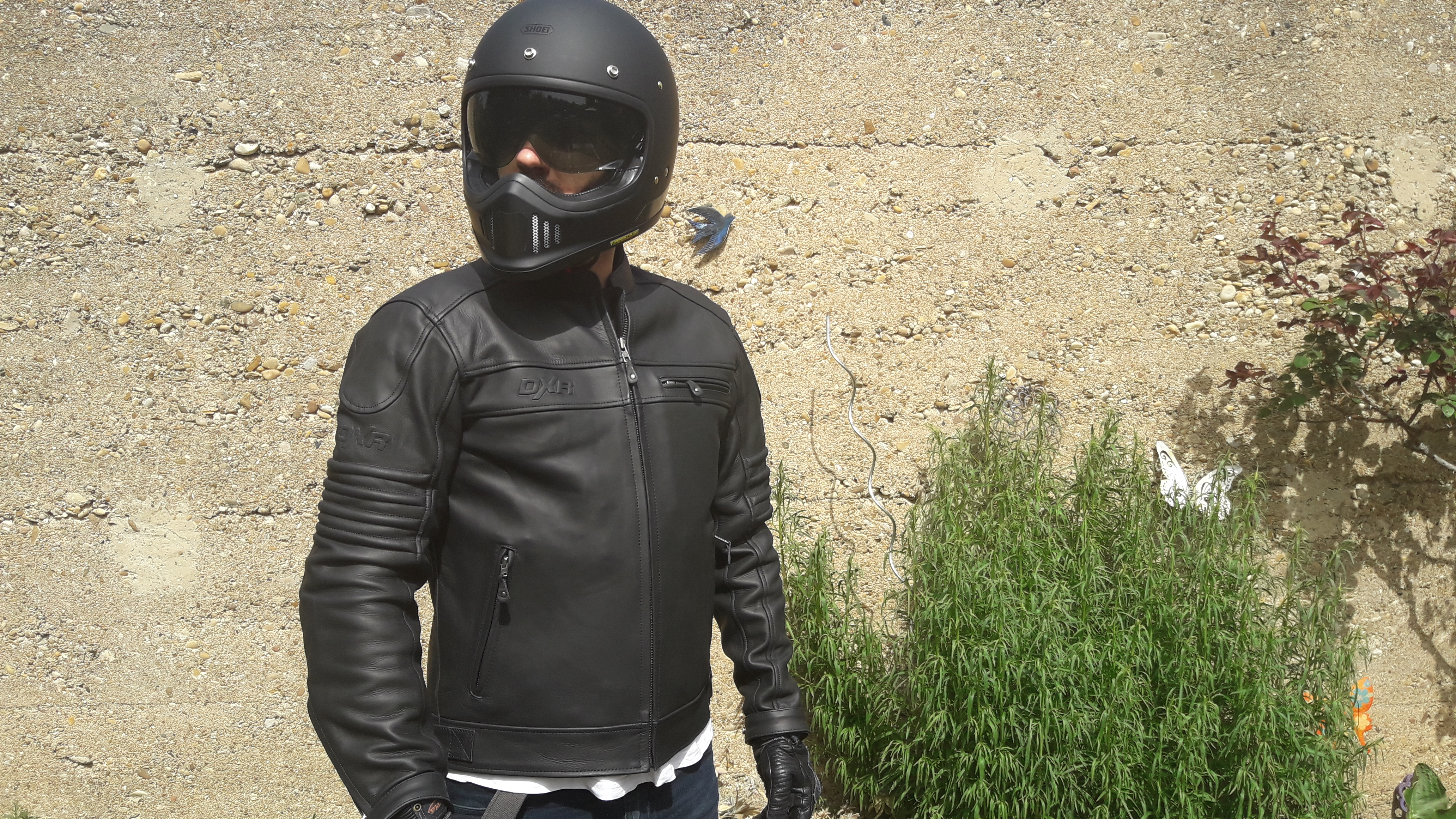 Coupe régular pour le blouson en cuir DXR DEAN