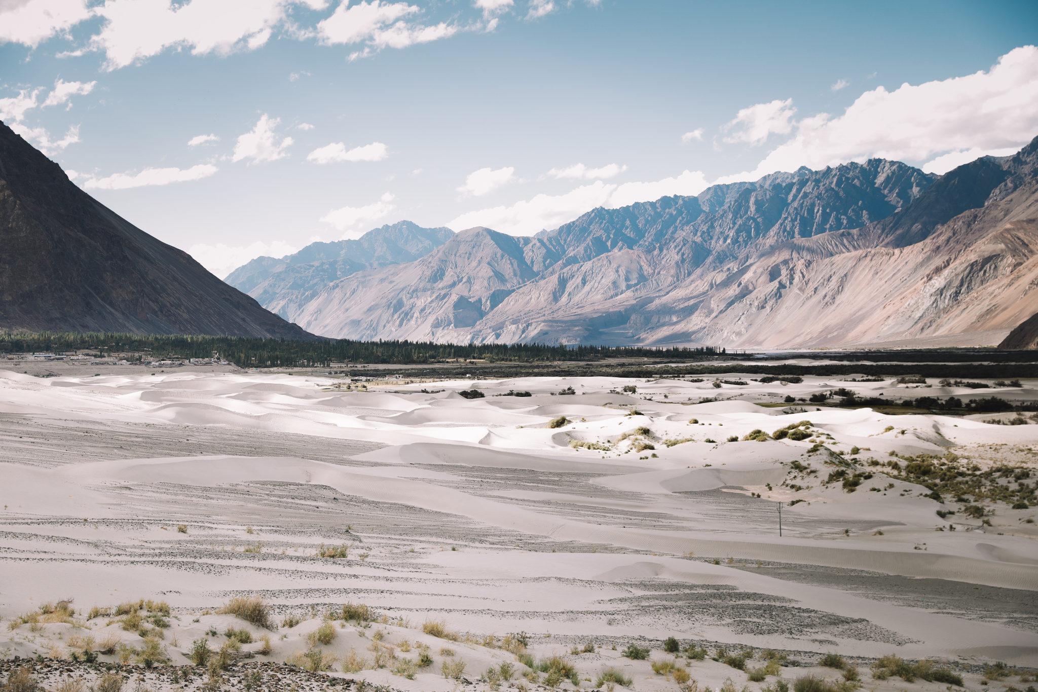 Vallée de la Nubra Ladakh