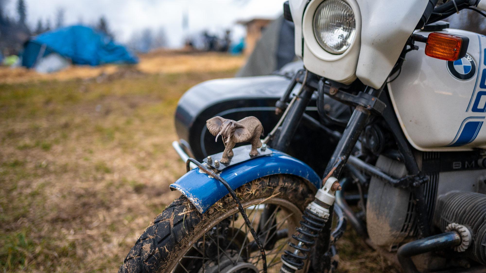 Garde-boue de moto orné d'un éléphant